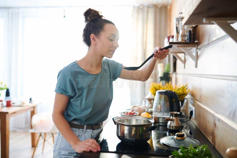 potrawka target1594_1_ wy?mienicie domowego domowej roboty przepis zdjęcie stock