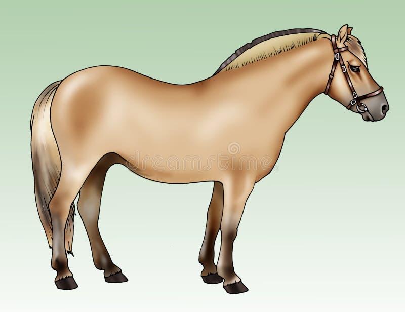 Potro - casta del fiordo stock de ilustración