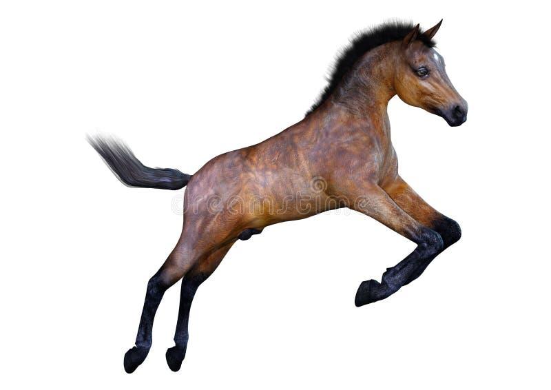 potro do cavalo da rendi??o 3D no branco ilustração do vetor