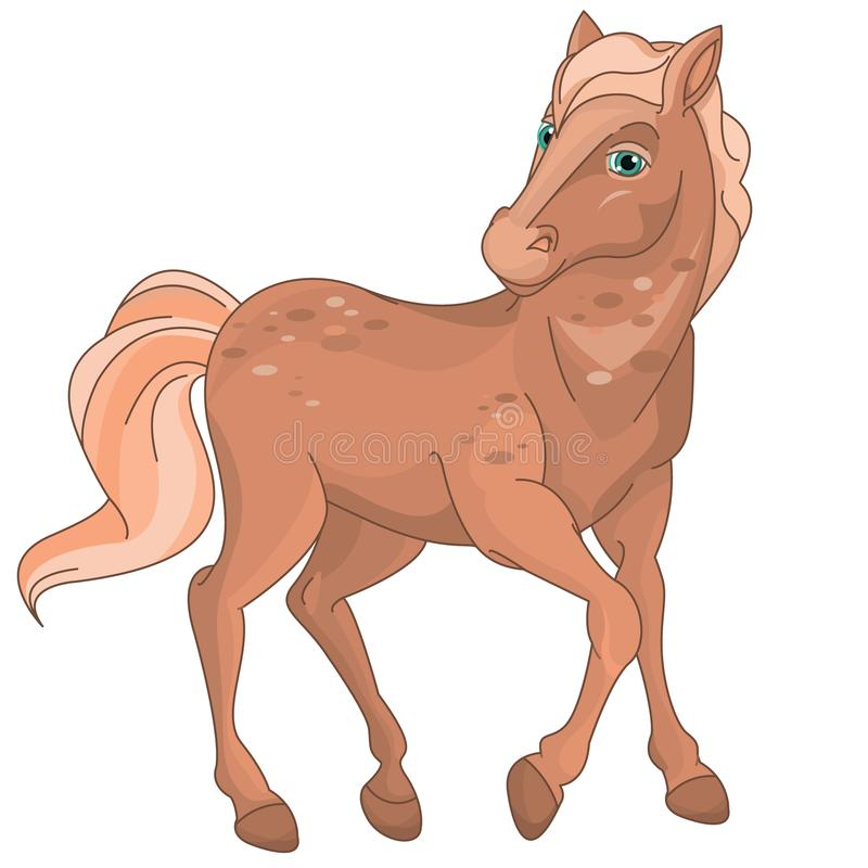 Potro lindo bonito del caballo de Brown stock de ilustración
