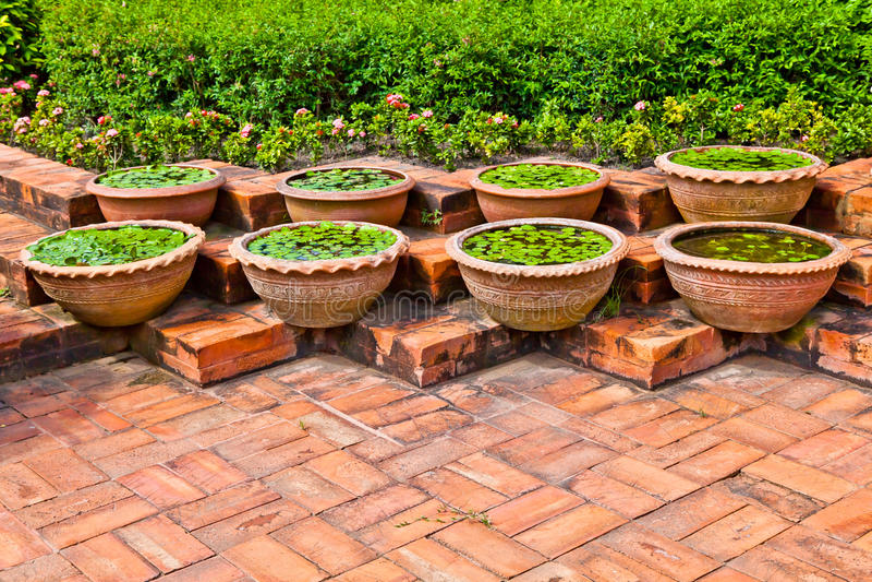 Download Pots for aquatic plant stock image. Image of arrange - 23766037
