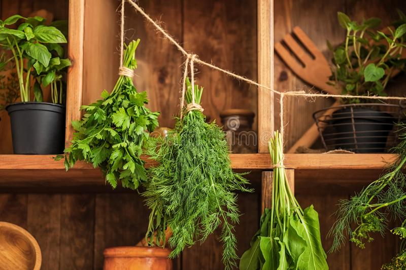 Pots and bunches with fresh herbs hanging on string near wooden shelves royalty free stock image