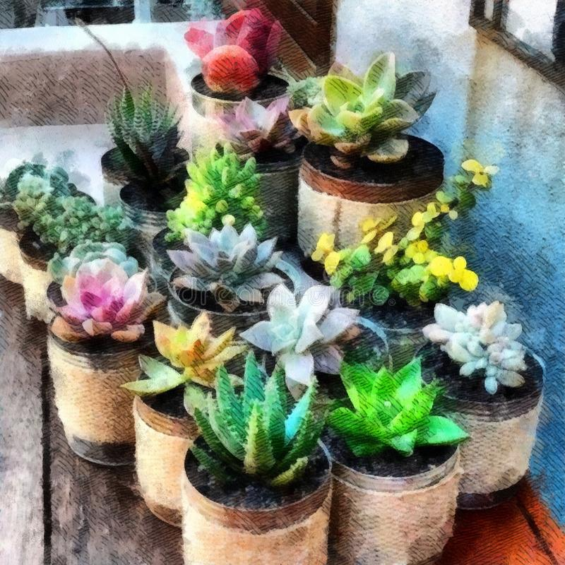 Pots d'argile succulents d'usines sur le fond en bois de papier peint de peinture d'aquarelle de table illustration stock