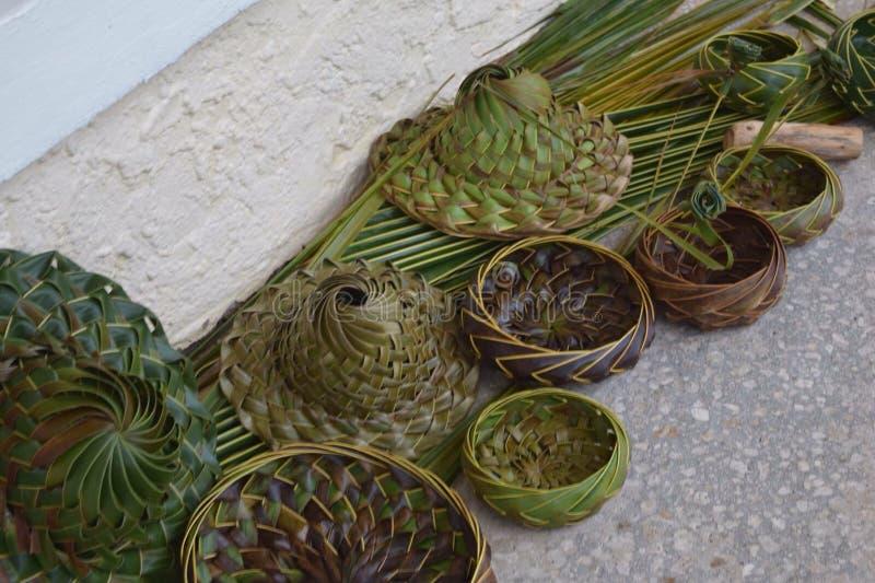 Pots d'herbe photographie stock libre de droits