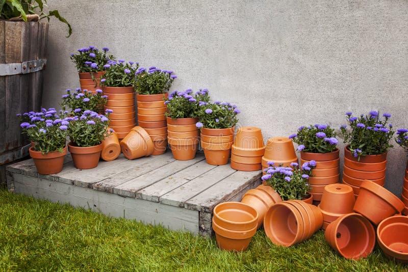 Pots d'usine image stock
