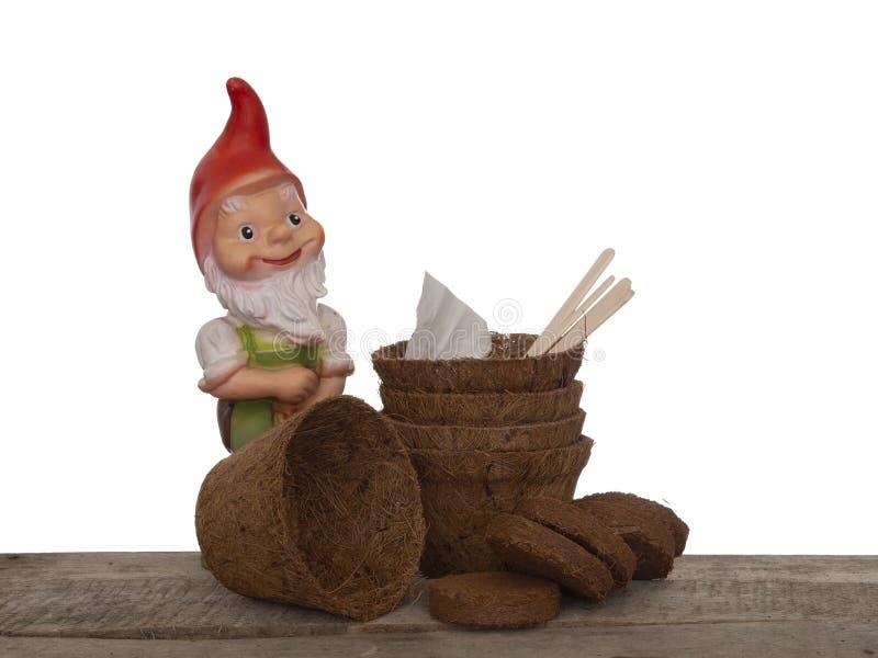 Pots d'usine de fibre de coco et compost comprimé avec les labels en bois, les graines et le gnome générique de jardin Favorable  photos stock