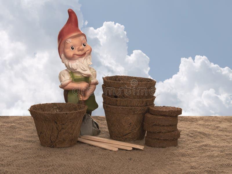Pots d'usine de fibre de coco et compost comprimé avec les labels en bois et le gnome générique de jardin Ressort favorable à l'e image libre de droits