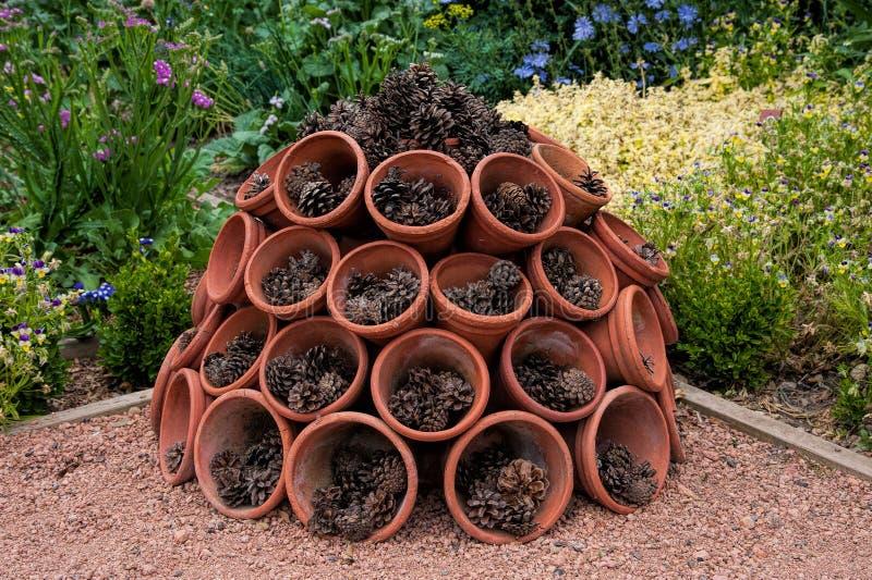 Pots de fleur photos libres de droits