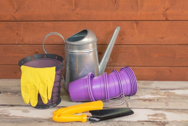 Pots de fleur en plastique pourpres, boîte d'arrosage, gants et outils de jardinage jaunes sur la table en bois âgée photos stock