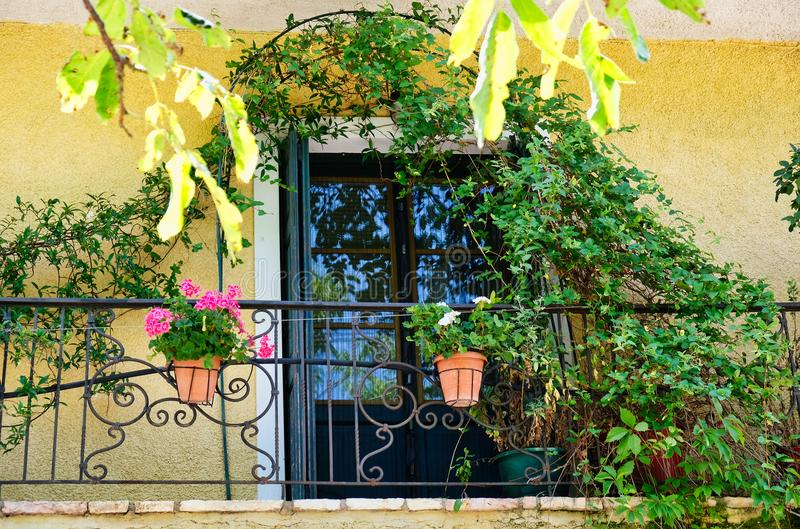 Pots de fleur et arbuste s'élevant sur le balcon de dentelle de fer, Grèce photographie stock