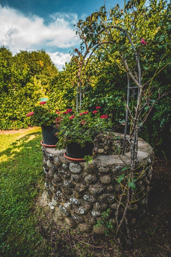 Pots de fleur de géranium au bord d'un puits d'eau images libres de droits