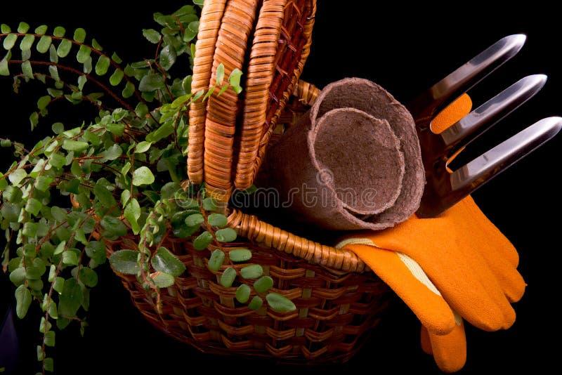 Pots de tourbe pour des jeunes plantes, des râteaux, des gants oranges, l'usine et le panier photographie stock
