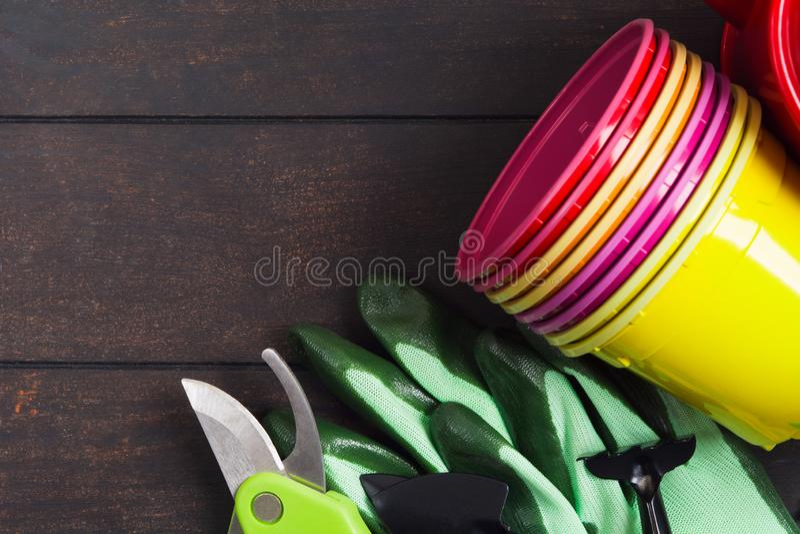 Pots en plastique colorés, gants outils pour faire du jardinage et jeune plante sur le fond en bois photos libres de droits