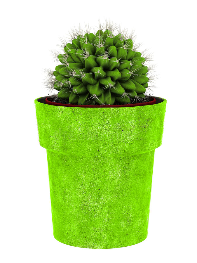 Download Potted cactus stock illustration. Image of flowerpot - 13988683