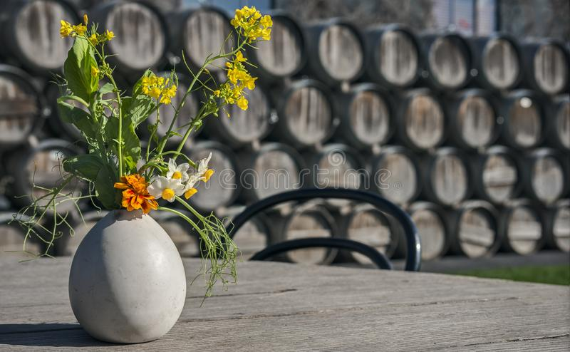 Potted Flowers on Wooden Table with Wine Barrels. Colorful Flowers in Egg Shell Vase on Wooden Picnic Table in front of Rustic Wine Barrels stock image
