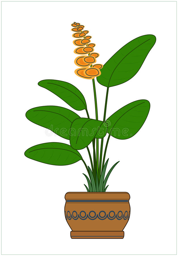 Download Potted Plant. Houseplants. Vector. Stock Vector   Illustration Of  Bloom, Vector