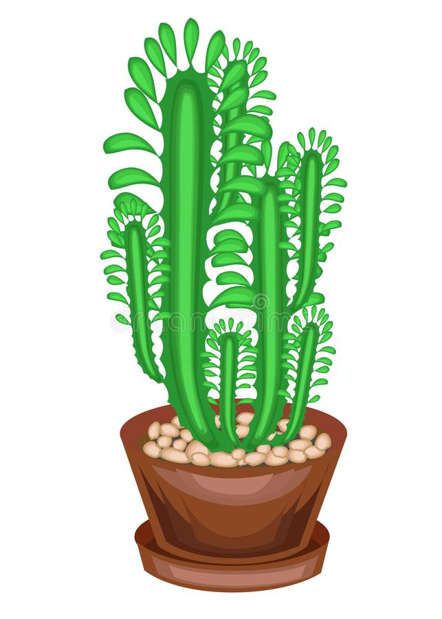 Potted plant in a pot. A few greens of branches of a succulent, a cactus. High vertical stems with facets and spines. Lovely hobby vector illustration