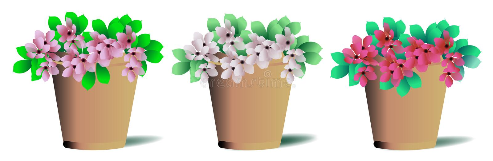 Download Potted plants stock photo. Image of purple, cute, nature - 34240766