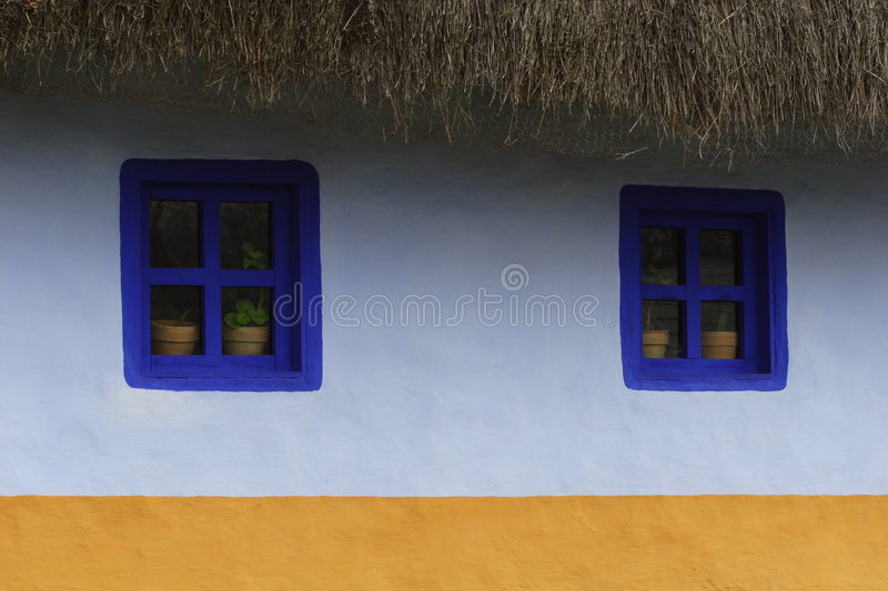Potted Plants In Windows stock image
