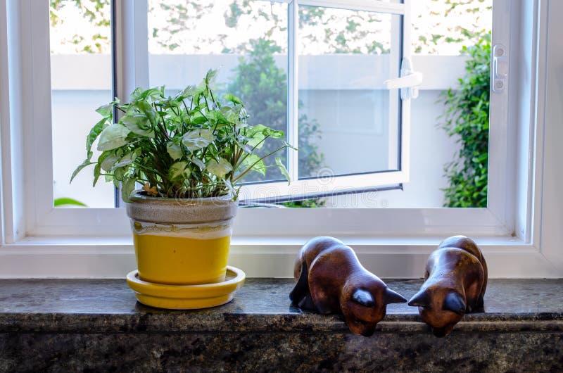 Potteninstallatie en Ornament stock afbeelding