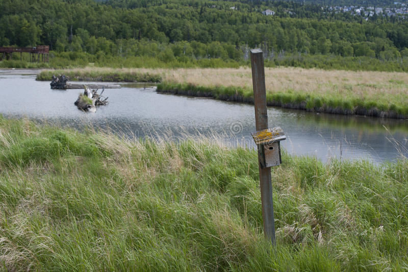 Download Potter Marsh Wildlife Refuge Anchorage Alaska Stock Image - Image of alaska, june: 56257105