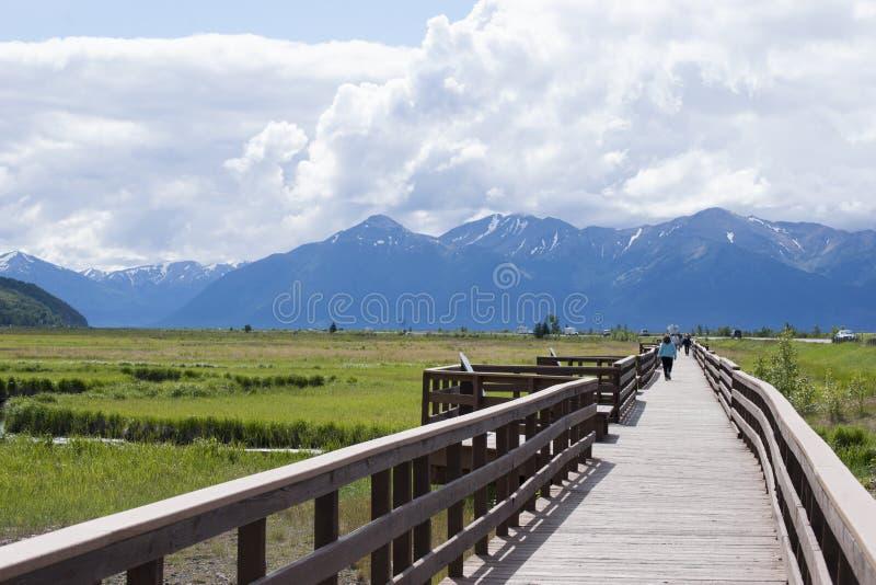 Download Potter Marsh Wildlife Refuge Anchorage Alaska Editorial Photography - Image of child, wildlife: 56257197