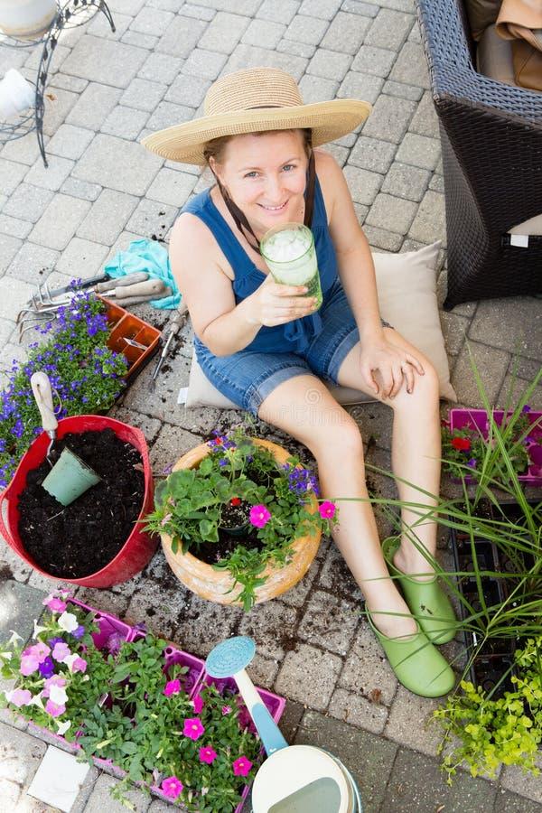 Potting atrativo da mulher acima dos houseplants na mola foto de stock