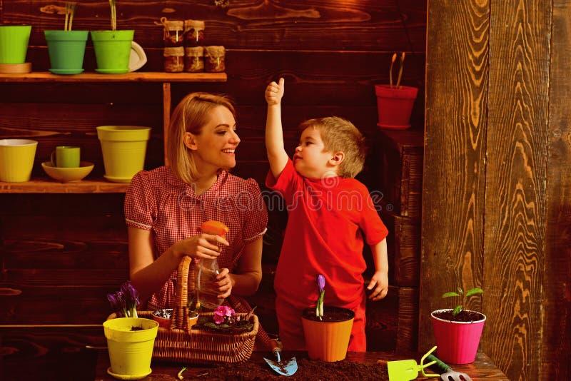 Pottingkonzept Kleines Kindershowdaumen herauf Hand zur Frau in der Pottinghalle Familienbetriebsblume im Pottingboden potting stockbild