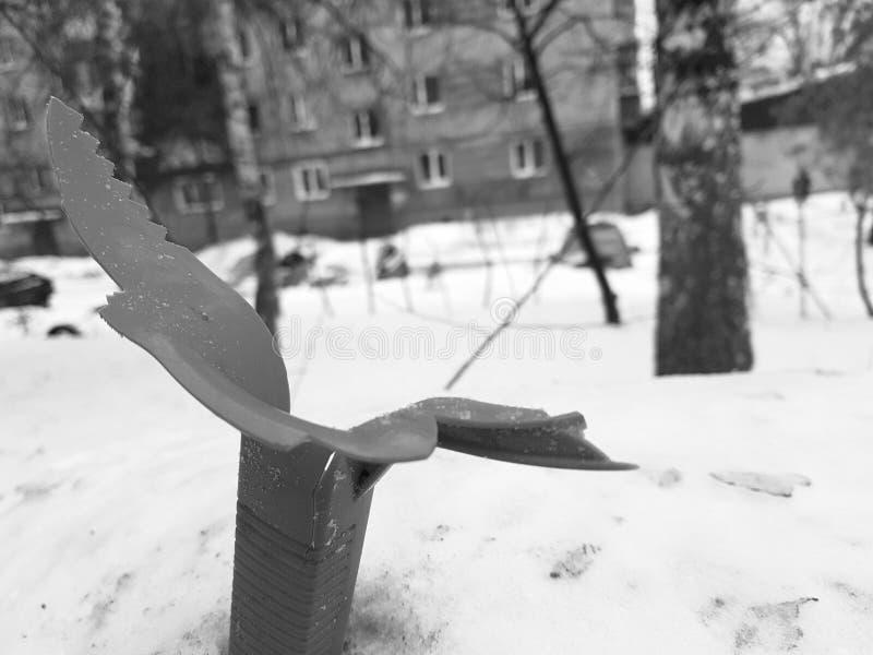 Poubelle cassée de cru sur la neige photographie stock libre de droits