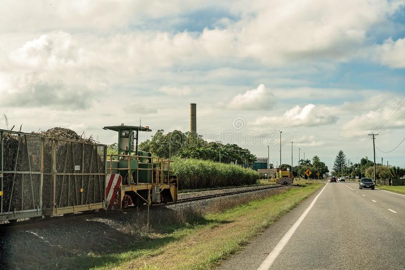 Poubelles de Sugar Cane Being Taken To Mill moissonné images libres de droits
