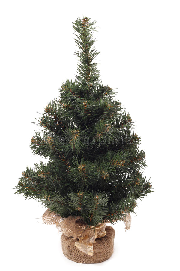 Pouca árvore de Natal imagem de stock royalty free