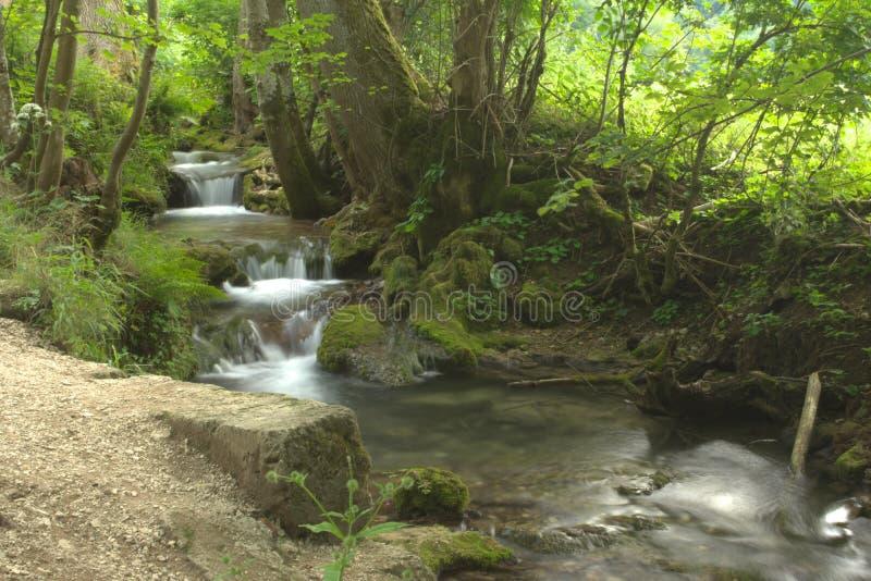 Pouca cachoeira em Alemanha, verão imagem de stock royalty free