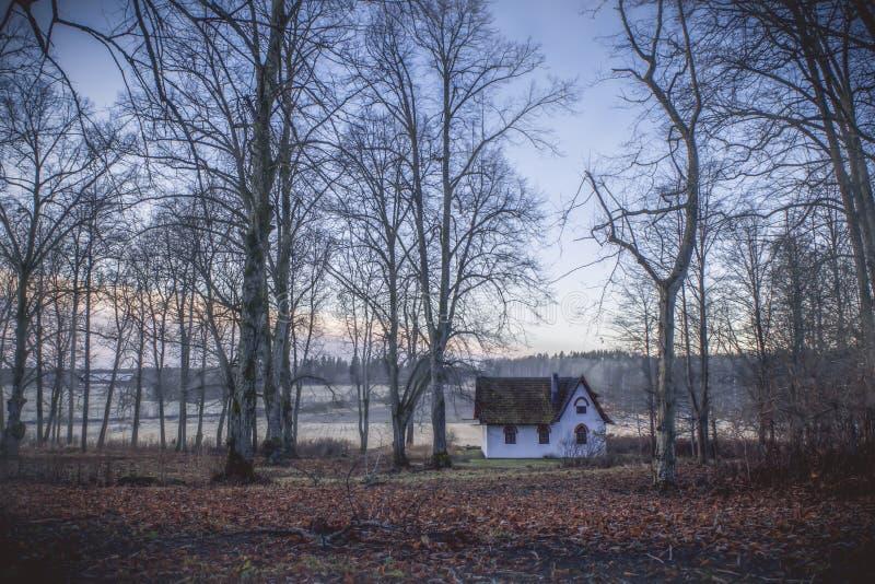 Pouca casa de campo branca na floresta colorida fotografia de stock royalty free