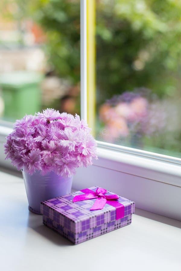 Pouca cubeta roxa com o ramalhete macio do cravo cor-de-rosa bonito com a caixa de presente violeta perto da janela na luz do dia imagem de stock royalty free