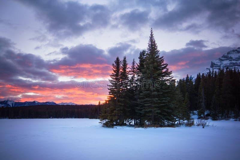 Pouca ilha da floresta no meio do lago congelado coberto pela neve durante o por do sol colorido, dois Jack Lake, parque nacional foto de stock