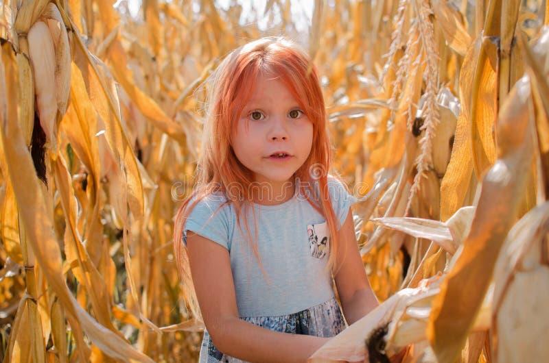 Pouca menina caucasiano da criança de seis anos na exploração agrícola Menina bonito feliz fotografia de stock royalty free