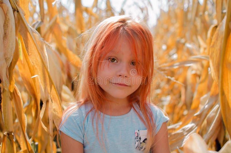Pouca menina caucasiano da criança de seis anos na exploração agrícola Menina bonito feliz fotografia de stock