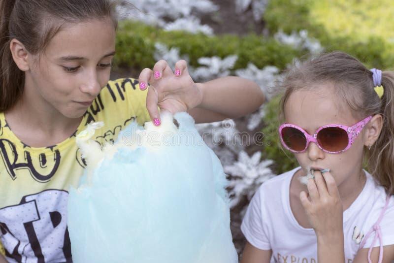 A pouca menina encantador que come o algod?o doce enorme Dia ensolarado do ver?o Tempo ao algod?o doce do restSweet fotografia de stock