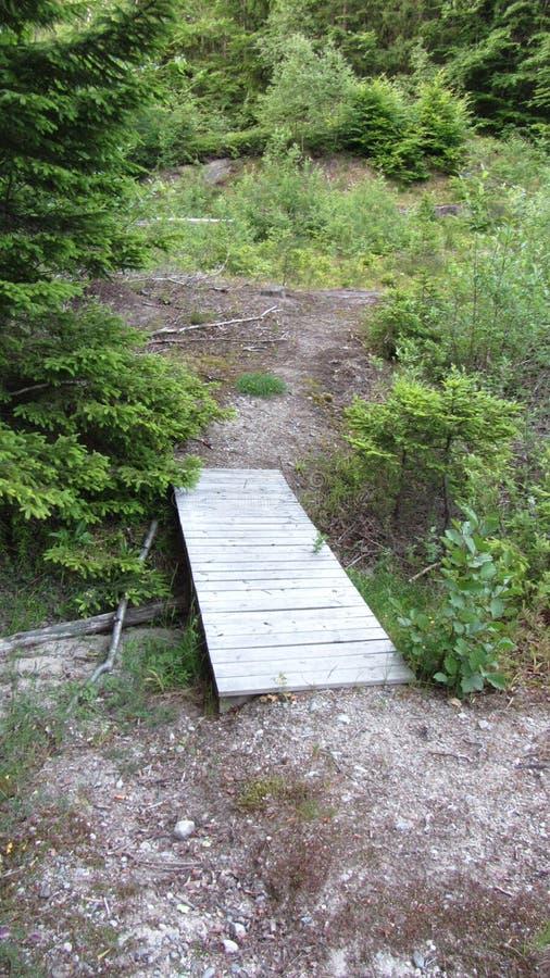 Pouca ponte arborizado Vesteraalen fotos de stock royalty free