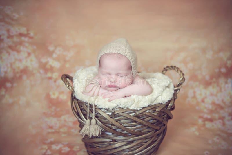 Pouco beb? E da princesa Flor perfeita imagens de stock royalty free