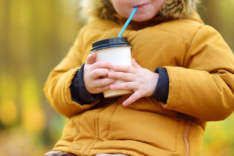 Pouco criança que anda na floresta e no cacau quente bebendo no dia frio do outono fotos de stock