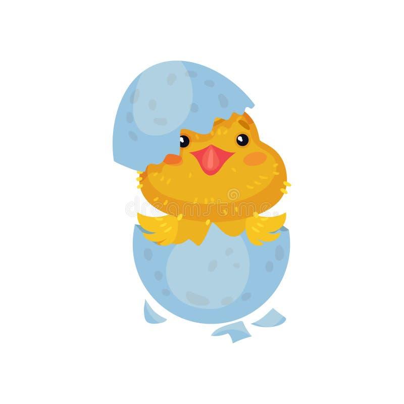 Pouco galinha amarela dos desenhos animados chocou de um ovo Ilustra??o do vetor no fundo branco ilustração royalty free