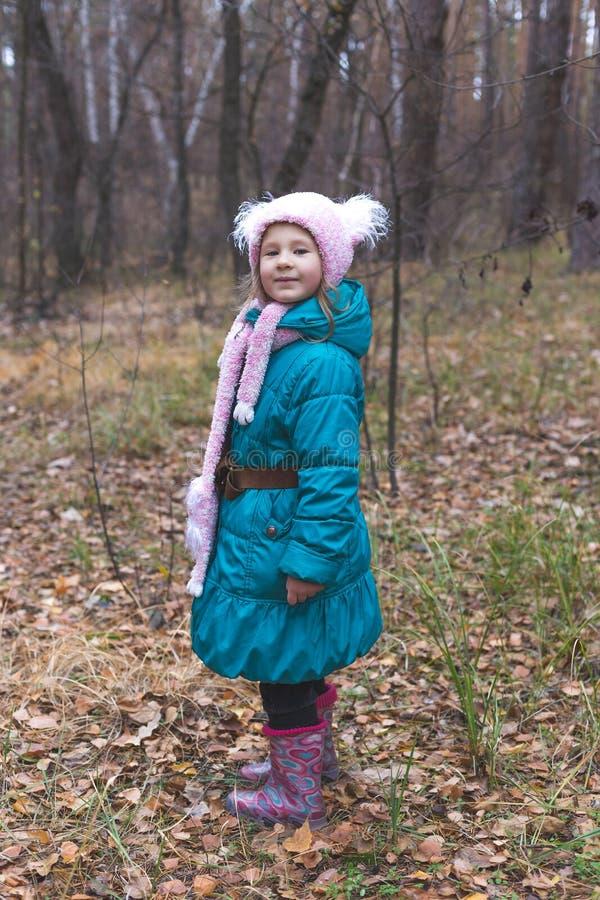 Pouco menina bonito na floresta no tempo do outono fotos de stock