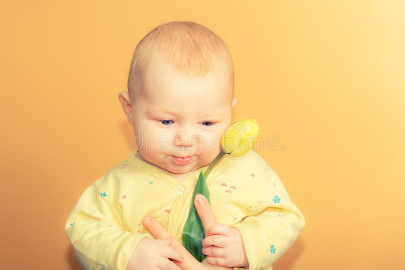 Pouco menina de três meses com uma tulipa amarela em um fundo bege no estúdio, no conceito da ternura e no amor com um recém-n foto de stock royalty free