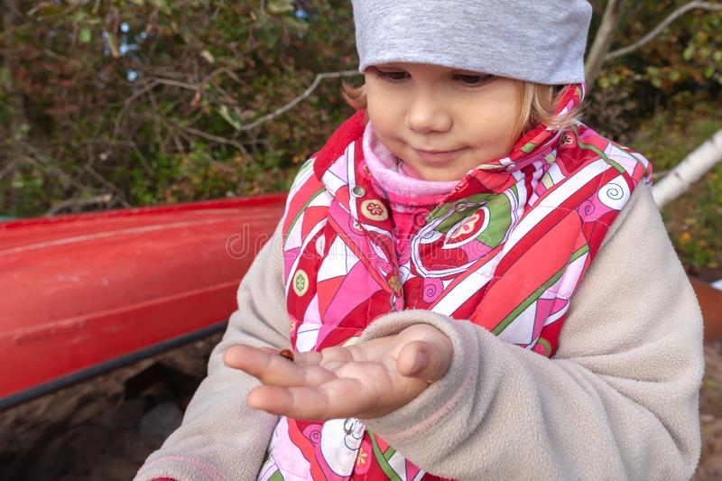 Pouco menina europeia guarda o joaninha à disposição imagens de stock royalty free
