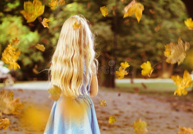 Pouco menina loura que levanta em um cenário do parque do outono fotos de stock royalty free