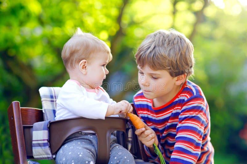Pouco menino louro da criança que dá uma cenoura à irmã do bebê Irmãos felizes que comem o petisco saudável Bebê que senta-se no  foto de stock royalty free