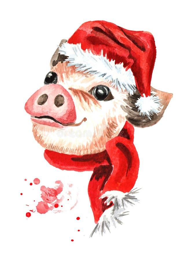 Pouco mini porco da xícara de chá engraçada bonito no tampão do Natal Símbolo do ano novo Ilustração tirada mão da aquarela ilustração royalty free