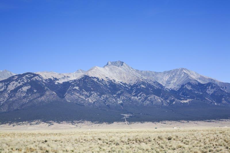 Pouco montanha Colorado do urso foto de stock