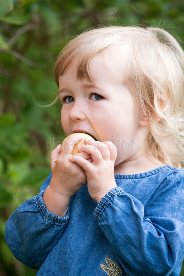 Pouco opinião branca da cara do close up da maçã comer da menina imagem de stock